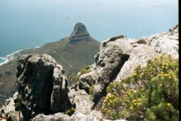 A view from Table Mountain